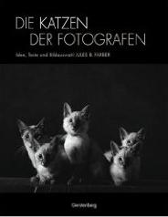 die katzen der fotografen